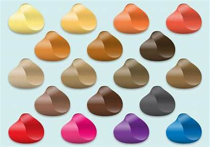 Vector Hair Samples Colorful Swatches Skin Tone