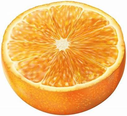 Orange Half Transparent Clip Clipart Fruit Laranja