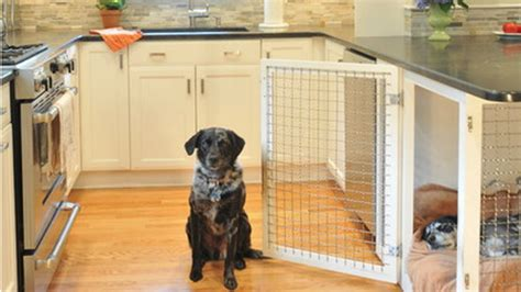 indoor dog houses     pawsitively genius