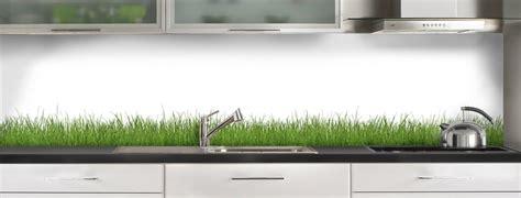 plaque en inox pour cuisine crédence de cuisine herbes c macredence com
