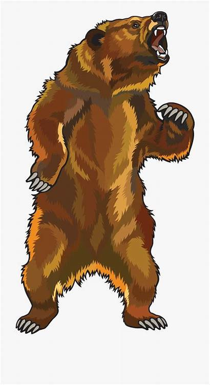 Grizzly Bear Angry Standing Clipart Cartoon Transparent