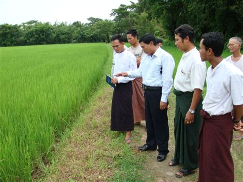 agricultural extension human resource development project