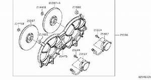 Nissan Altima Engine Cooling Fan  Radiator  Fitting  Cvt