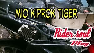 Mio Kiprok Tiger