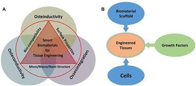 frontiers state  art functional biomaterials  tissue engineering materials