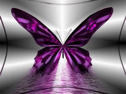 Butterfly Desktop Purple Wallpapers Wallpapersafari