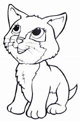 Coloring Cat Siamese Pages Printable Getcolorings Print sketch template