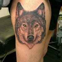 excellent wolf watercolor tattoo  arm  women