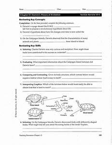 Darwin U0026 39 S Theory Of Evolution Worksheet