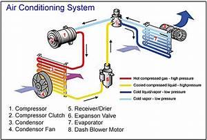 Condenser Coil Maintenance