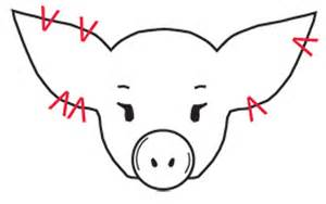 Pig Ear Notching Worksheet Figure 4 Exles Of Properly Notched Pigs