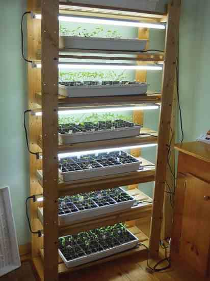 seed starting easy setups  home gardeners mother