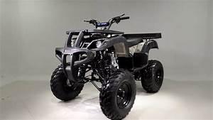 The Taotao Rhino 250 Is A 250cc Machine With Air