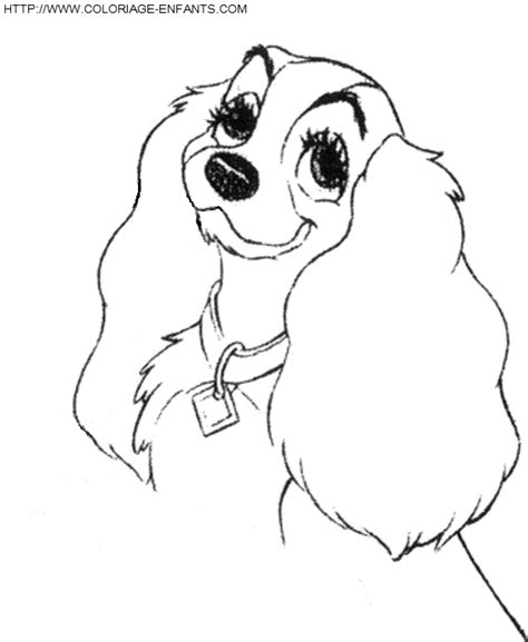 HD wallpapers koala coloring pages