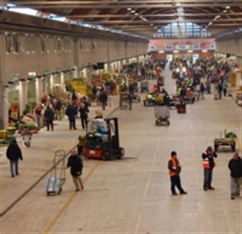 mercato dei fiori napoli volla inaugurato il mercato dei fiori nel caan