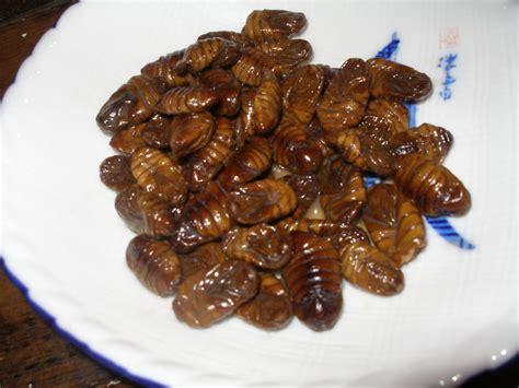 cuisine cocoon file edible silkworm cocoons jpg