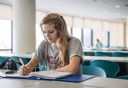 Study Abroad Business Studying Natalie Moore University