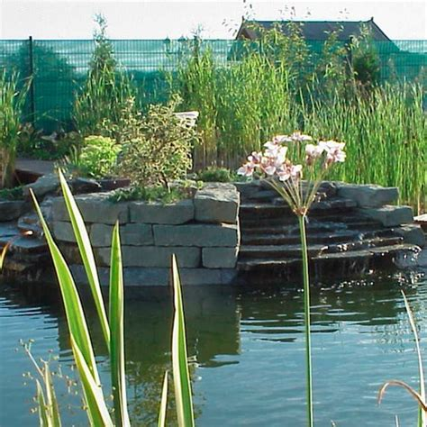 Garten Und Landschaftsbau Neuss by K 220 Sters Garten Und Landschaftsbau Neuss Teichbau