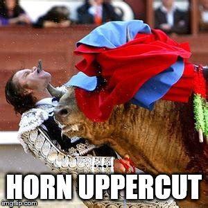 Uppercut Meme - bull fighter imgflip