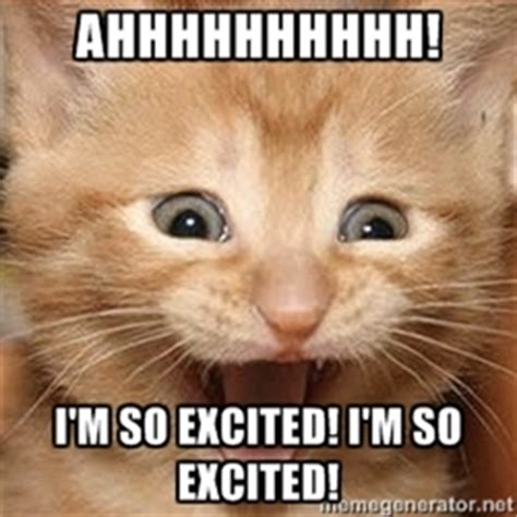 Excited Meme Excited Kitten Memes Image Memes At Relatably