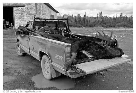 Black and White Picture/photo (Trucks): Truck with