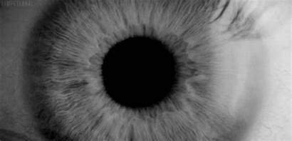 Eye Eyes Bw Gifs Dilating Giphy Cat