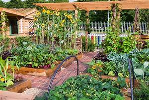 Vegetable, fruit, flower garden with crayon fence Plant