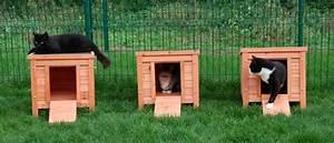 Cabane Pour Chat Exterieur Pas Cher : fabriquer une cabane pour chat exterieur ~ Teatrodelosmanantiales.com Idées de Décoration