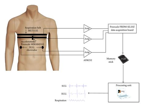 Block Diagram Measurement Setup The Ecg Electrodes