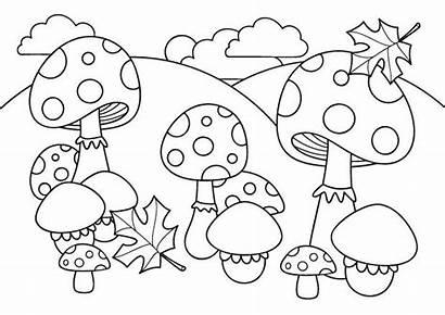 Automne Coloriage Champignons Et Feuilles Pilz Von