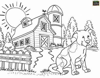 Coloring Pages Agriculture Printable Country Tools Farm