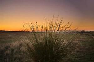 Beauty, Is, Everywhere, Sunset, Sky, Stock, Photo