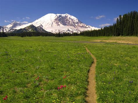 scenic trail mount rainier computer backgrounds wallpaper