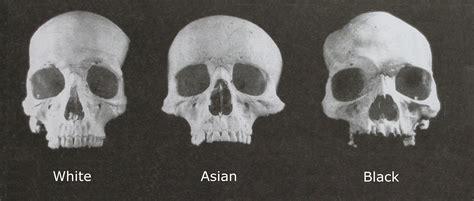 Evolution Of Racial Characteristics