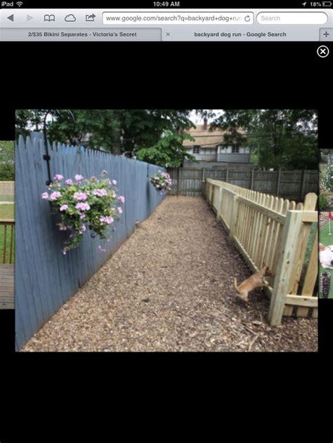 Backyard Runs by Best 25 Run Fence Ideas On Diy Run
