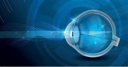 Anatomy Eye 3d Parts