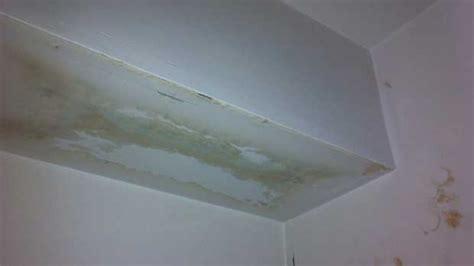 fuite d eau plafond assurance habitation la recherche de fuite d eau