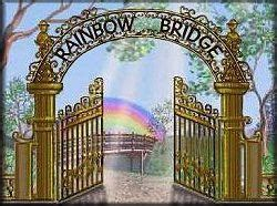 rainbow bridge poem  pet loss bereavement poem