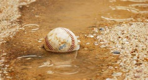 play baseball   rain bats finder