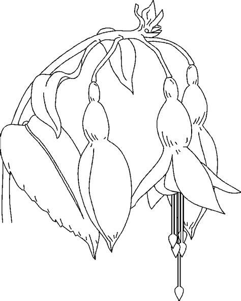 fiori disegni disegni da colorare di fiori