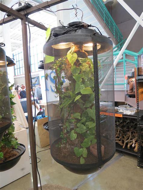 diy misting system chameleon design ideas