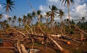 File:Chumphon typhoon damage 3.jpg - Wikimedia Commons