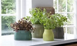 Kräutertöpfe In Der Küche : blument pfe kr utert pfe skandinavische ~ Michelbontemps.com Haus und Dekorationen