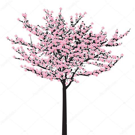 Sakura rosa de flor completa (flor de cerezo) sobre madera
