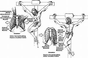 Respirations During Crucifixion  Left  Inhalation  With