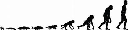 Evolution Humankind Darwin Evolved Humans Did Amoeba