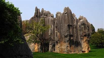 1080 Forest Stone 1920 Yunnan Khitan Wolf
