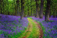 Beautiful Landscape Photography Scotland