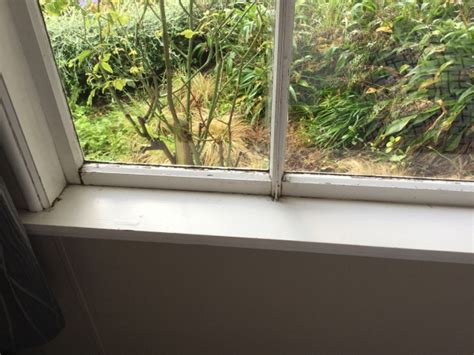 Re-painting Interior Window Frames