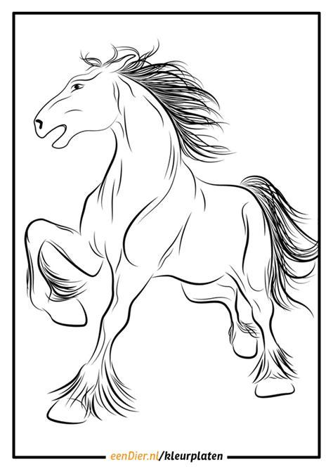 Kleurplaat Paarden Uitprinten by Kleurplaat Galloperend Paard